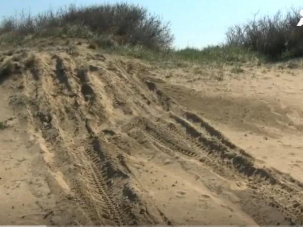"""Джип е унищожил дюните на плаж """"Корал"""", алармираха екоактивисти. Те"""