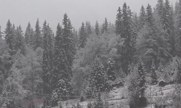 10 см нов сняг наваля на Пампорово за ден