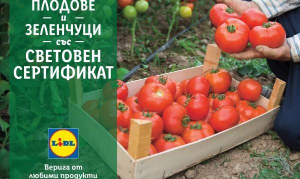 В подкрепа на родното производство LIDL предлага 100% български розови домати и био краставици в цялата верига магазини