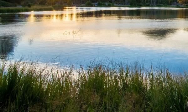 Рибари намериха труп на жена в Панчаревското езеро