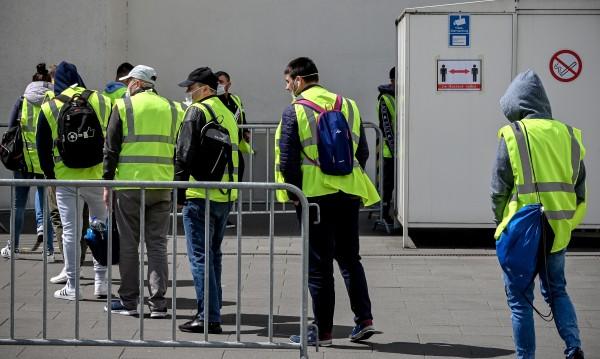 Германия забранява временни работници в кланиците