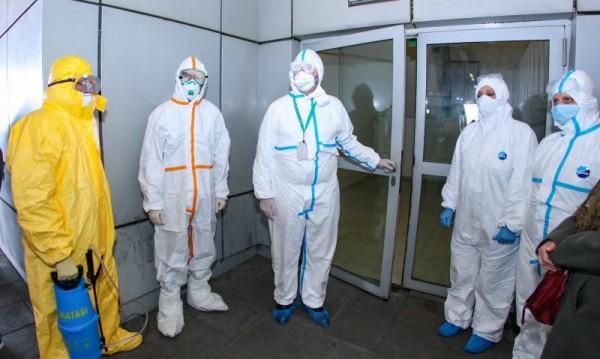 Нова надежда за изход от пандемията: Кучетата надушват COVID-19
