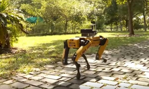 Патрул в парка в Сингапур, но не какъв да е, а куче робот