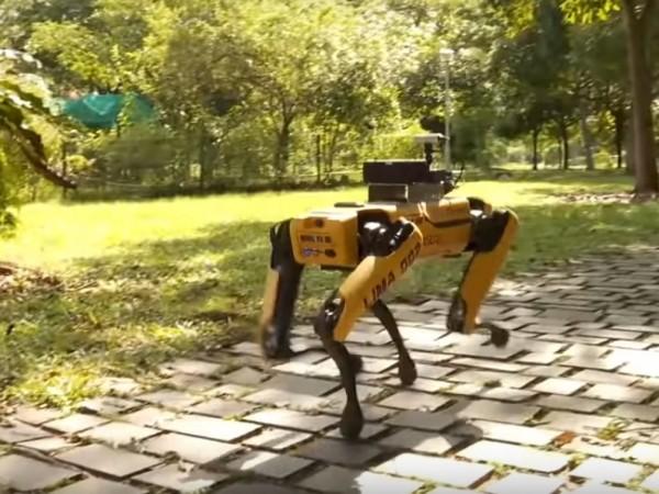 Робот с четири крака, създаден от инженерната компания от Масачузетс