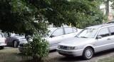 Започват проверки за паркирали в зелени площи в София