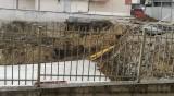 Helpbook алармира за незаконно строителство в столичен квартал