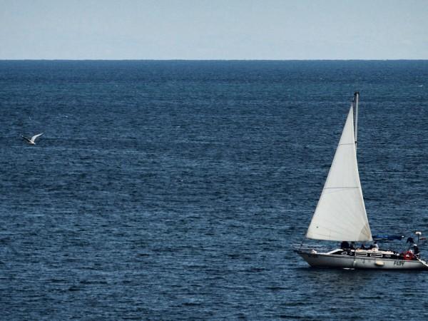 Мръсните фекални петна в морето, които са резултат от свободно