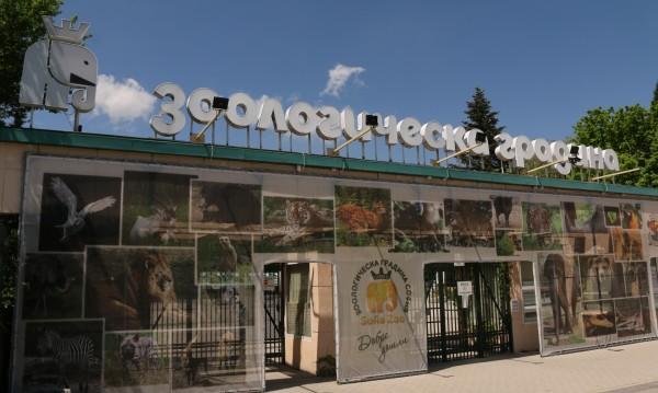 Зоологическата градина в София с вход свободен на 1 юни