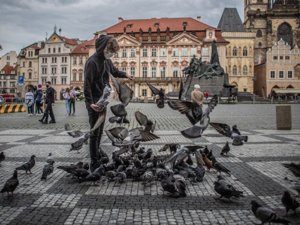 Чешкото правителство взе решение да отвори границите си и да