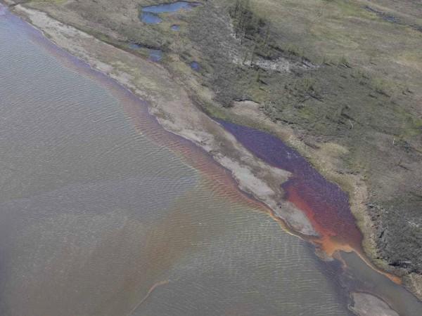 Руските власти се опитват да овладеят екологичната катастрофа край арктическия