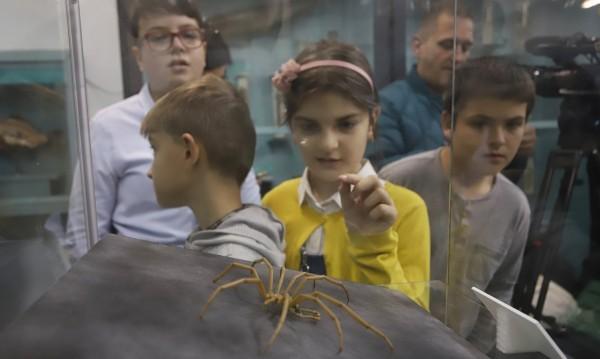 """Националният природонаучен музей при БАН ви кани на """"Изследователска ваканция в музея"""""""