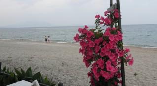 Цакат ли ни на плажа? Прокуратурата поиска проверки