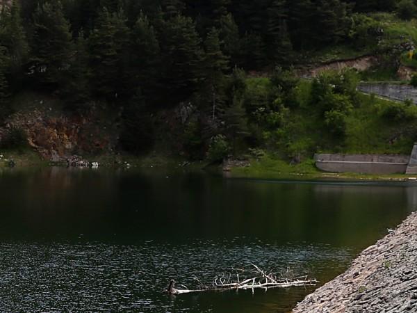 22-годишен мъж от София е намерен мъртъв във водите на