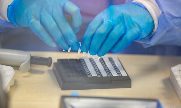 СЗО съобщи за рекорден брой заразени за денонощие