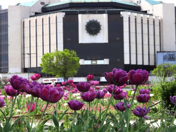 Националният дворец на културата ще съкрати 30 процента от персонала