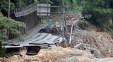 Десетки са загиналите при наводнения в Япония