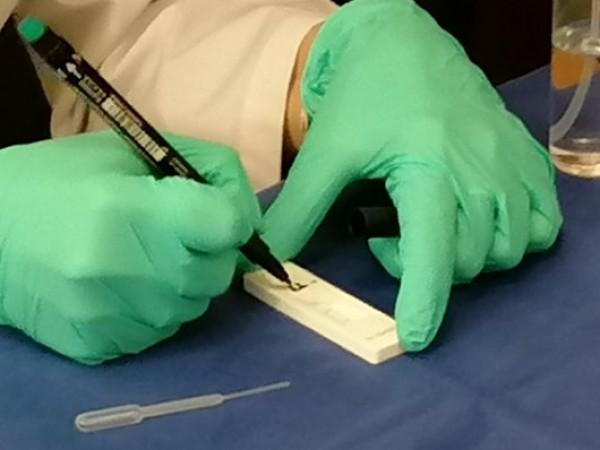 Двама служители на затвора в Пловдив са заразени с коронавирус.