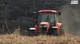 Тежка суша, рекордно ниски добиви, как ще се отразят на хляба?