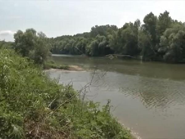 Десетки килограми мъртва риба са изплували по бреговете на река