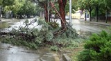 Вятър със скорост над 100 км/ч е нанесъл щети в Сливенско