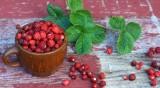 Рецептата Dnes: Сладко от горски ягоди