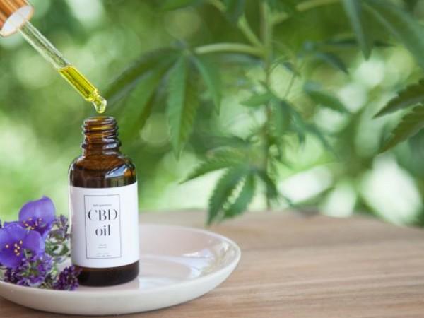Канабидолът е нетоксичен компонент, съдържащ се в конопа или марихуаната.