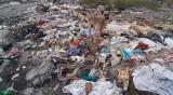 Над 76 т боклуци са извозени от незаконни сметища в Батановци