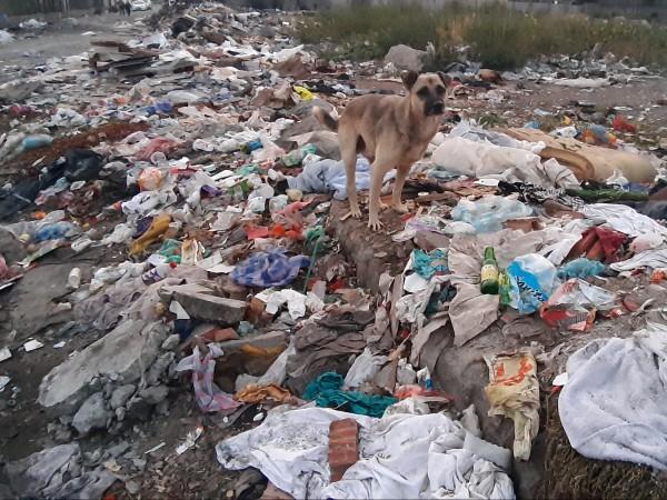 Над 76 тона отпадъци са извозени от нерегламентирани сметища в