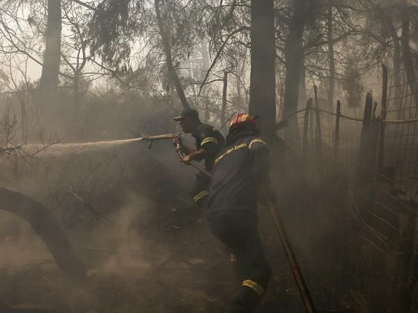 Гръцките огнеборци се опитват да овладеят голям горски пожар, разпалван