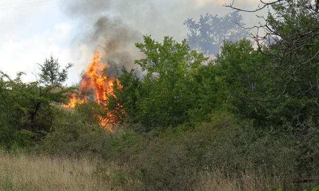 Пожар е избухнал край Симеоновград, обхванал е 300 декара