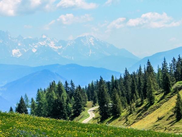 Трима планински служители са оказали съдействие на изгубени туристи в