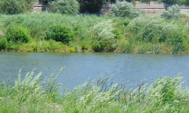 Взеха нови проби от водата в р. Марица