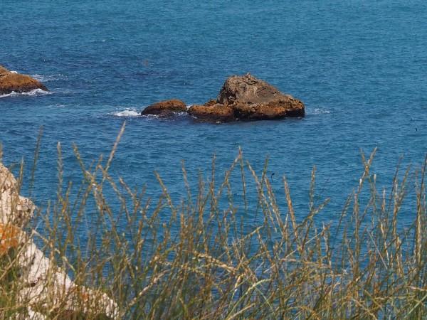 17-годишен младеж се е удавил в морето край Черноморец, съобщи