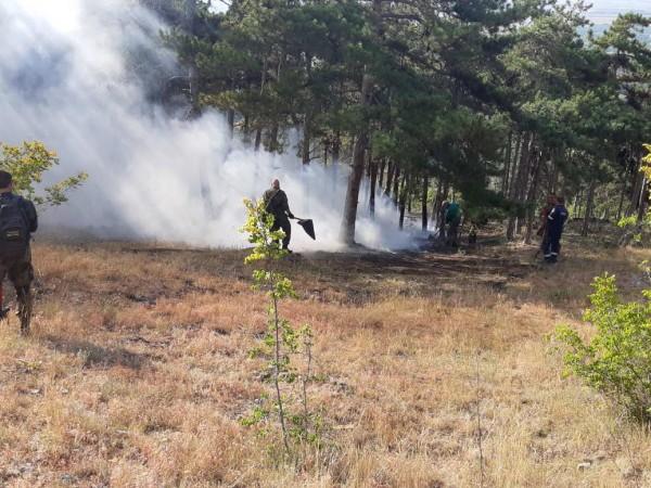 Пожар бушува между хасковските села Александрово и Константиново. Огънят е