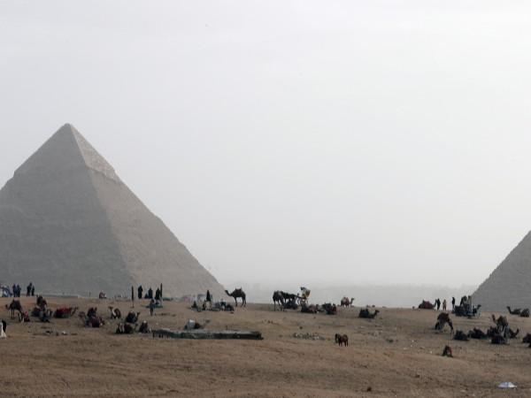 Египетските власти поканиха Илон Мъск да посети страната и лично