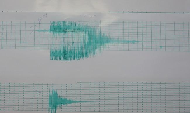 Земетресение от 3.2 по Рихтер край Мадан