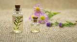 Полезно ли е маслото от чаено дърво?