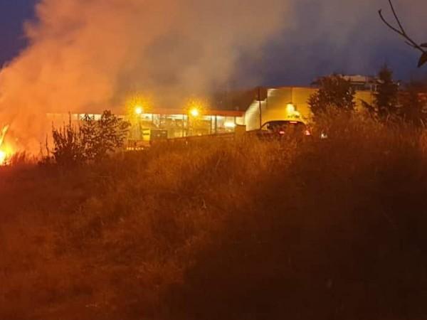 Голям пожар е избухнал в борова гора между харманлийските села