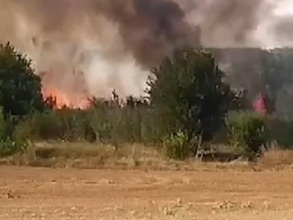 Почти денонощие огнеборците се опитват да овладеят пожара до елховското
