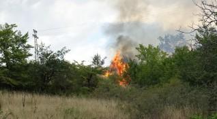 20 пожара горят в област Хасково
