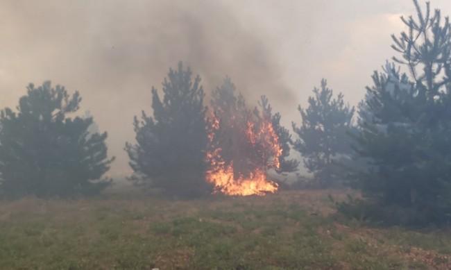Нов пожар – огнеборци гасят в шуменския квартал Дивдядово