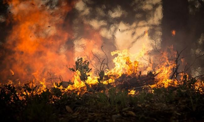 В 13 области в страната има повишен риск от пожари