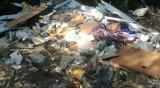 Тонове боклуци се изсипват в незаконно сметище край Невестино