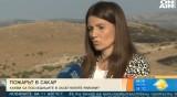 Над 50 000 декара растителност e изгоряла при пожара в Сакар