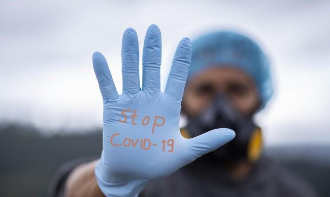 Проф. Витанов: Епидемията в България бавно се свива