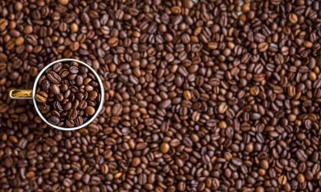 Глобалното затопляне убива кафето, производството му се свива с 50%