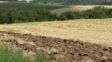 Танева: Земеделците ще получат най-много плащания през 2020-та