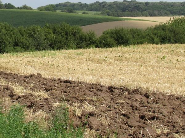 Тази година земеделските стопани ще получат най-много плащания, обяви в