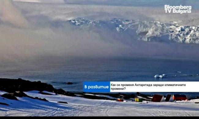 Климатолог: Ледът на Арктика може да се стопи до 2060 г.
