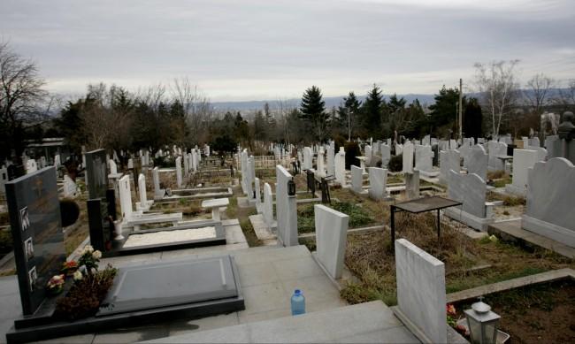 Починалите във Варна намалели въпреки пандемията